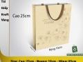 Kraft paper bag251005