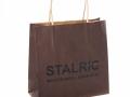 printed-recycled-kraft-twisted-handle-paper-bag-ref-stalric (1)
