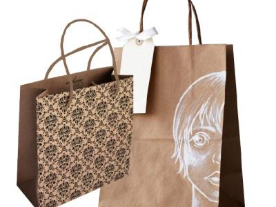 Dòng túi giấy môi trường (Kraft paper bag)
